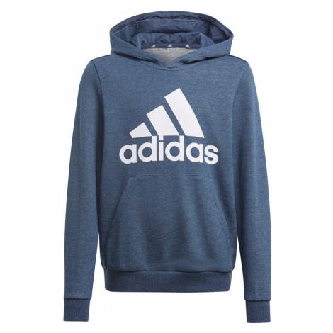Essentials Big Logo Hoody Adidas