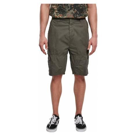 Brandit Shorts TY SHORTS BD2018 Olive