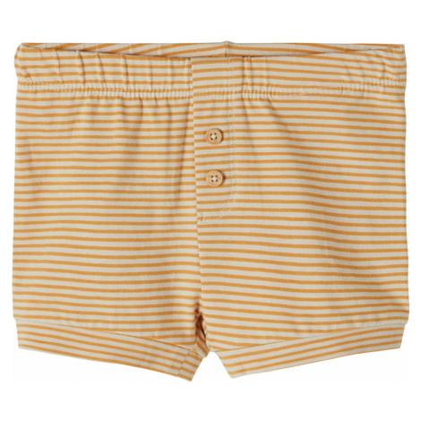 Shorts 'Fipan' Name it