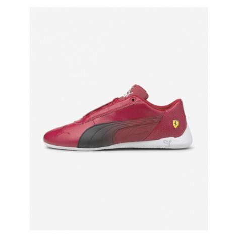 Puma Ferrari R-Cat Tennisschuhe Rot