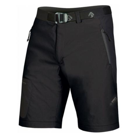 Shorts Direct Alpine Cruise black