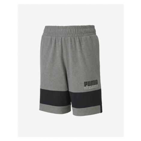 Puma Alpha Kinder Shorts Grau