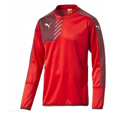 T-Shirt Puma Mestre Training 654368011