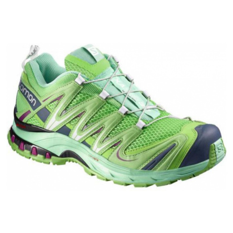 Schuhe Salomon XA PRO 3D W 379213