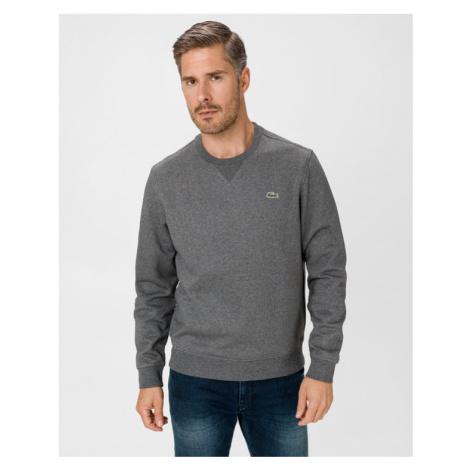 Lacoste Sweatshirt Grau