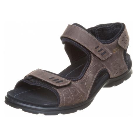 Schuhe für Herren Ecco
