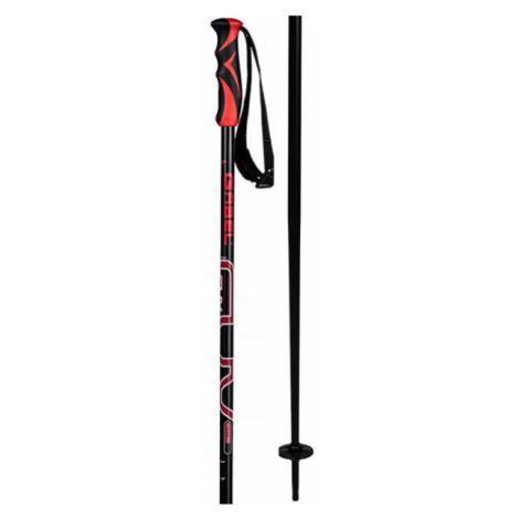 Gabel CVX - Skistöcke für die Abfahrt