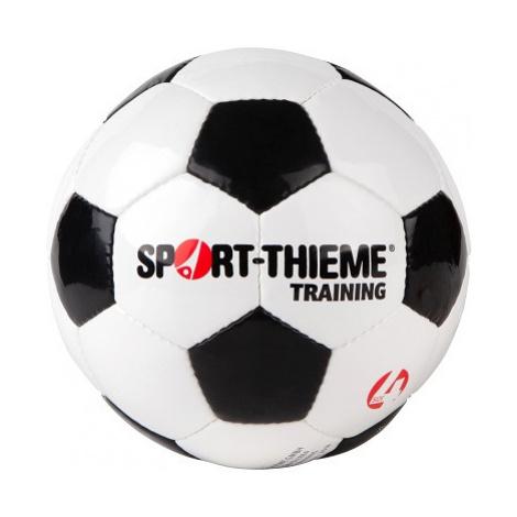 "Sport-Thieme Fußball ""Training"""