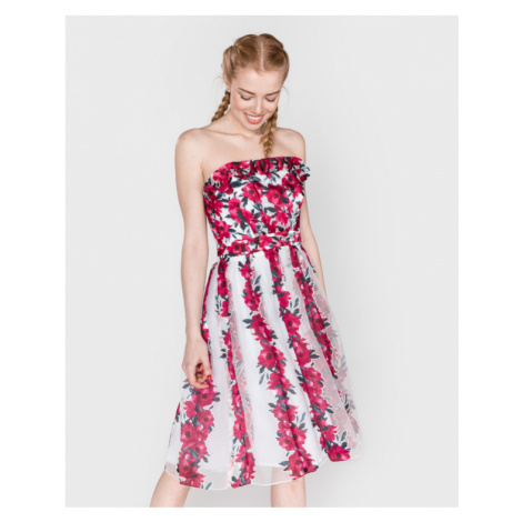 French Connection Kleid Rosa Weiß