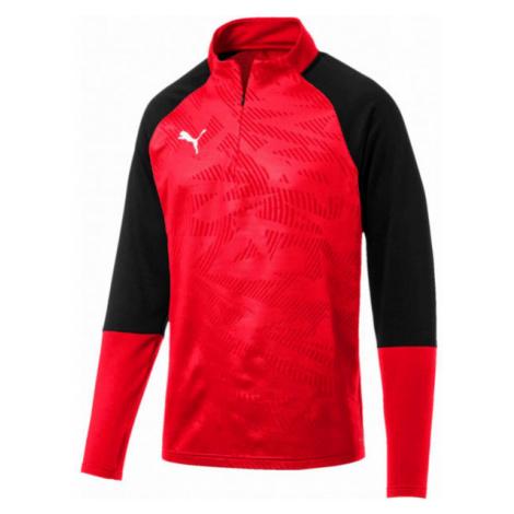 Puma CUP TRAININK 1 4 ZIPE - Herrenshirt