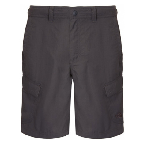 Shorts The North Face M HORIZON CARGO SHORTS CF72OC5