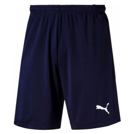 Puma LIGA TRAINING SHORTS blau - Herren Shorts