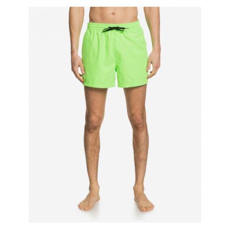 Quiksilver Everyday Swimsuit Grün