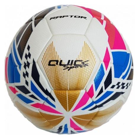 Quick RAPTOR - Fußball für die Halle