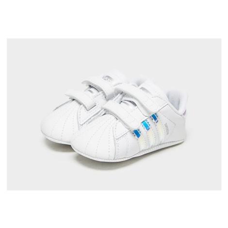 Adidas - Cloud White / Cloud White / Core Black/Blue, Cloud White / Cloud White / Core Black/Blu