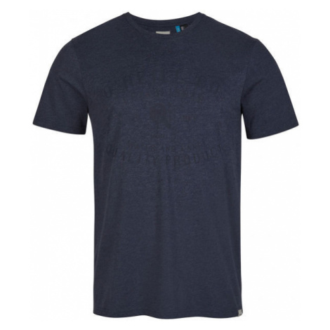 O'Neill LM ESTABLISHED T-SHIRT - Herrenshirt