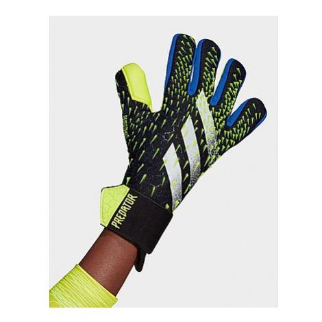 Adidas Predator Competition Torwarthandschuhe - Black / Royal Blue / Solar Yellow / White - Dame