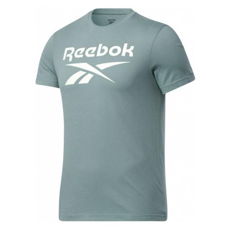 Ripped Big Logo T-Shirt Reebok