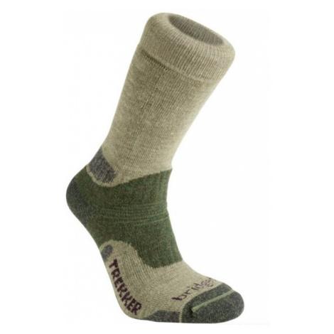 Socken Bridgedale Hike Midweight Merino Performance Boot green/736