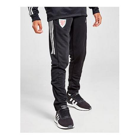Adidas Condivo 20 Trainingshose - Black, Black
