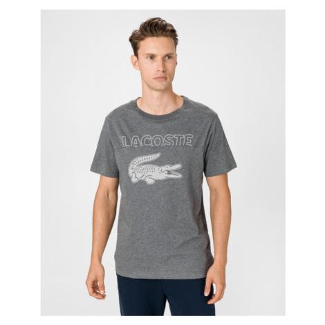 Lacoste T-Shirt Grau