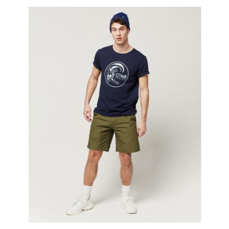 O'Neill Summer Shorts Grün