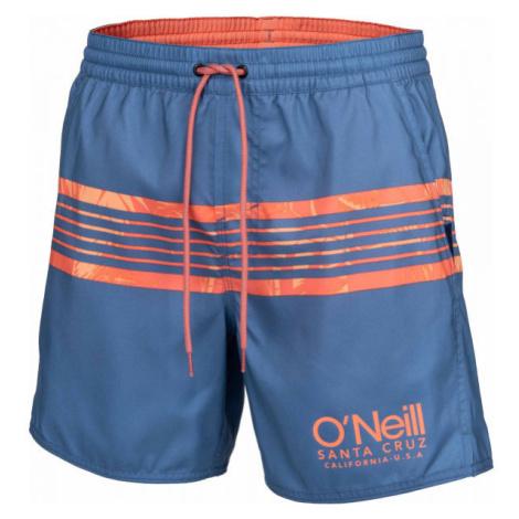 O'Neill PM CALI STRIPE SHORTS blau - Herren Wassershorts