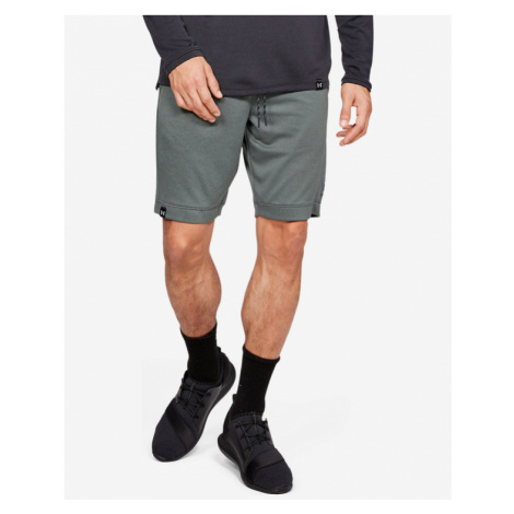Under Armour Lighter Shorts Grau