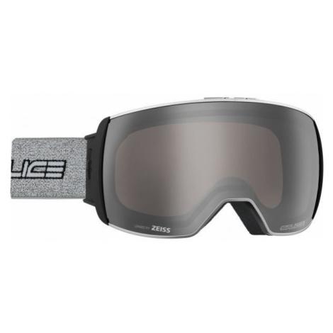 Salice 605DARWF grau - Skibrille